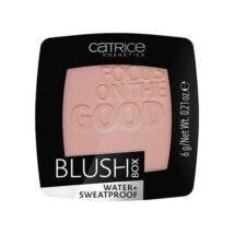 Catrice Blush Box Pirosító 025